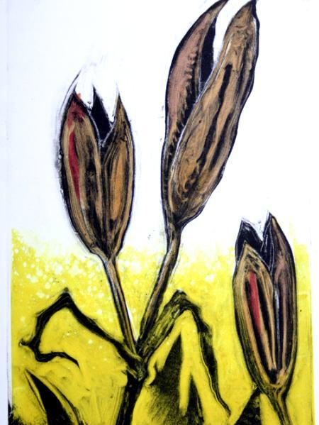 Seeds III