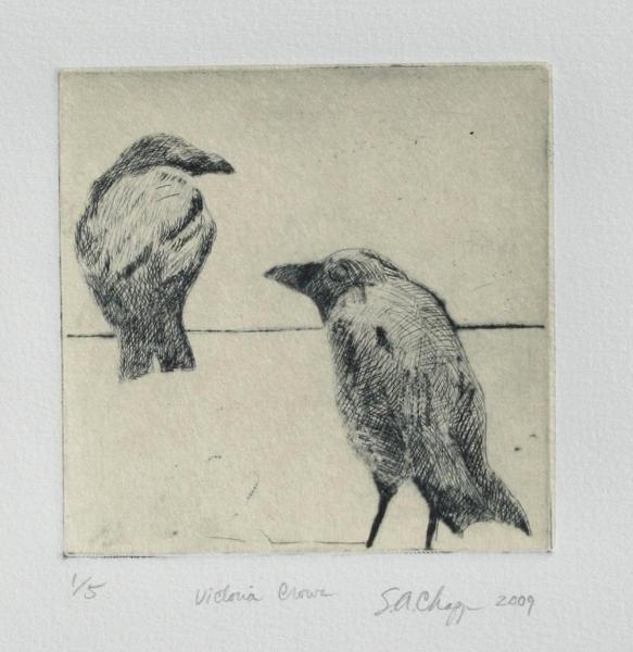 Victoria Crows